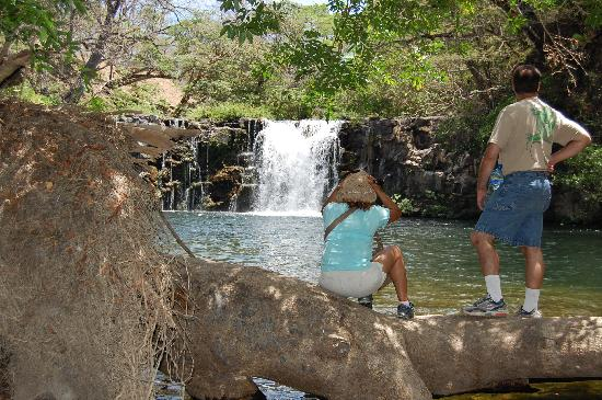 Africa Safari: Cooling Off At the Waterfall & Lagoon