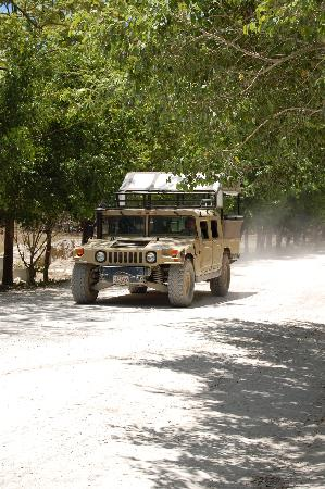 Africa Safari: Land Rover