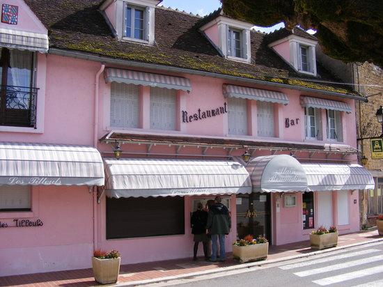 Auberge Les Tilleuls : Les Tilleuls Hotel Vincelottes