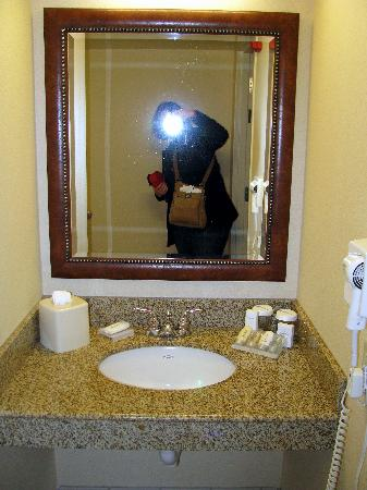 Hilton Garden Inn Akron-Canton Airport: Our bathroom, handicap accessible