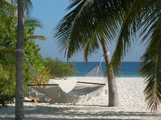 Mirihi Island Resort : Mirihi beach 1
