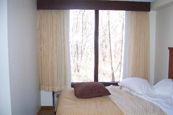 Hyatt Place Fair Lawn Paramus: the bed and the trees outside the window!