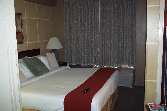 Holiday Inn Express Austin Airport: Comfy king-size bed