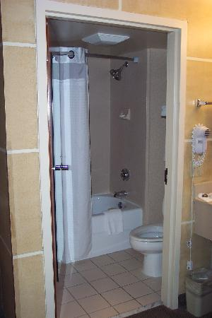 Holiday Inn Express Austin Airport: Bathroom (floor-length mirror on door)