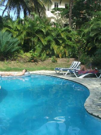 Olas De Oro: Villa 18 pool.....