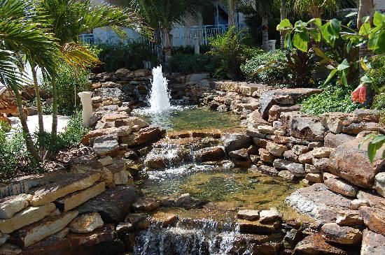 Seven Stars Resort & Spa: landscape