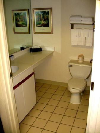 Extended Stay America - Memphis - Germantown: Homestead Memphis - Bathroom/Tub/Shower