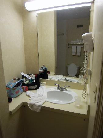 Vista Inn & Suites Murfreesboro: sink area