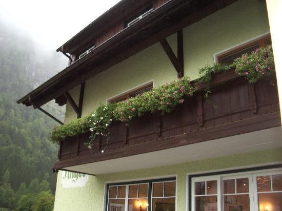 Gruner Anger: Our balcony