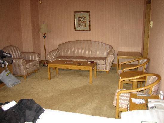 City Line Hotel (Harmony): living area