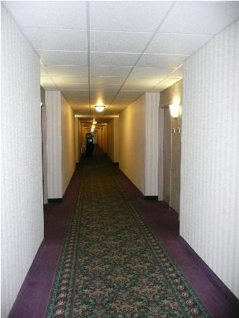 Holiday Inn Bloomington - Airport South: hallway 4th floor