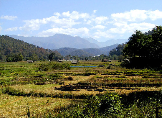 Mae Hong Son, Thailand: Fields and mountains