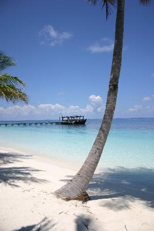 Mirihi Island Resort: Dive Boat