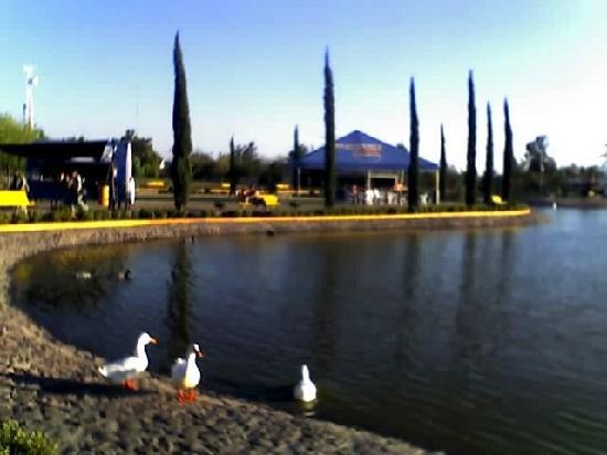 Parque Xochipilli Celaya