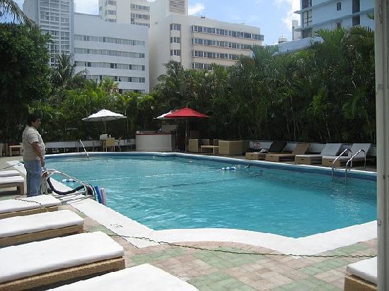 The Pool - Picture of Dorchester Hotel, Miami Beach - TripAdvisor