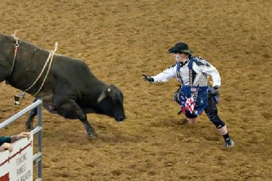 Rodeo Bull And Clown Picture Of Tejas Rodeo Company