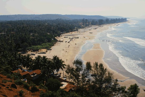 Arambol beach top tips before you go tripadvisor