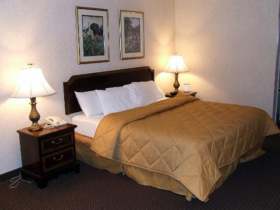 Comfort Inn Onley