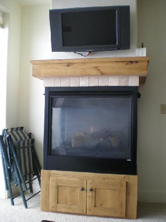 Newpark Resort & Hotel: Fireplace and TV