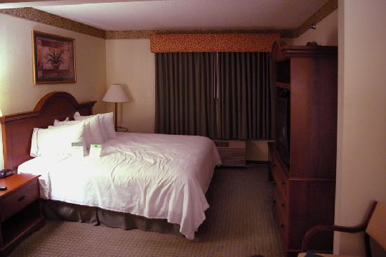 Wingate by Wyndham Schaumburg / Convention Center: Comfortable bed with many nice pillows
