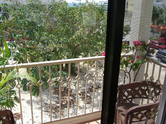 Royal Palms Condominiums: view from patio