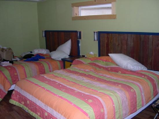 Kokopelli Lodge & Suites : room