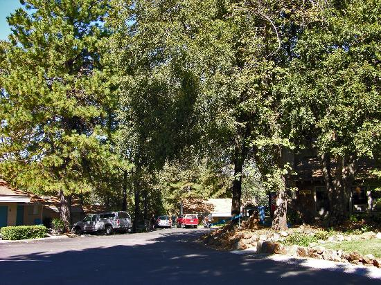 Grass Valley, Californien: The Alta Sierra Village Inn