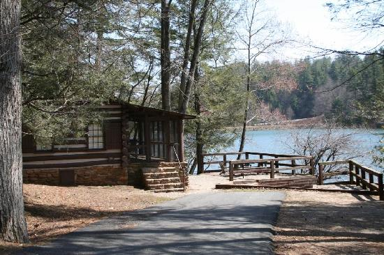 Ordinaire Vogel State Park  Cabin