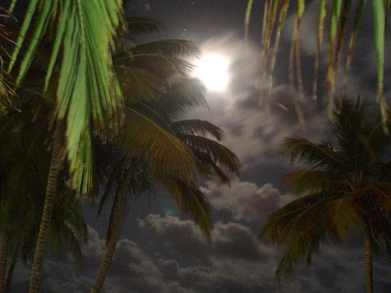 Hotel Lucia Beach Villas: Full moon on Lucia Beach