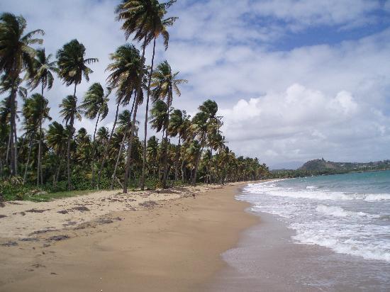 Hotel Lucia Beach Villas: Lucia Beach