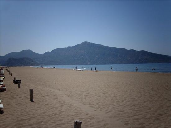 Crescent Hasirci Hotel & Villas: beach