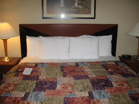 Sleep Inn & Suites Lancaster County : bed