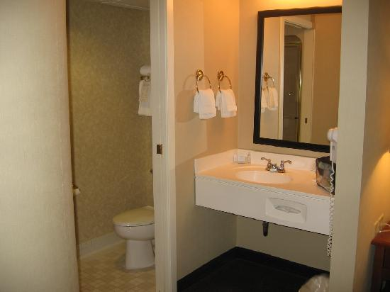 Sleep Inn & Suites Lancaster County : sink area outside bathroom, pocket door seperates toilet/shower
