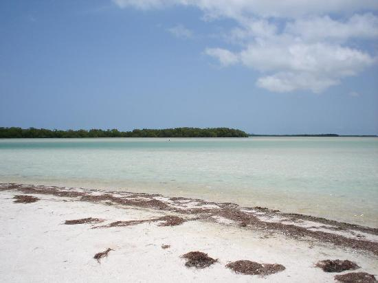 Holbox Island Mexico Isla Pasion