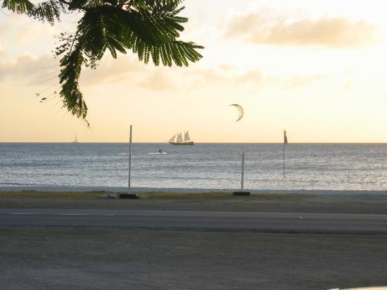 Aruba Beach Villas: A view from the Villas