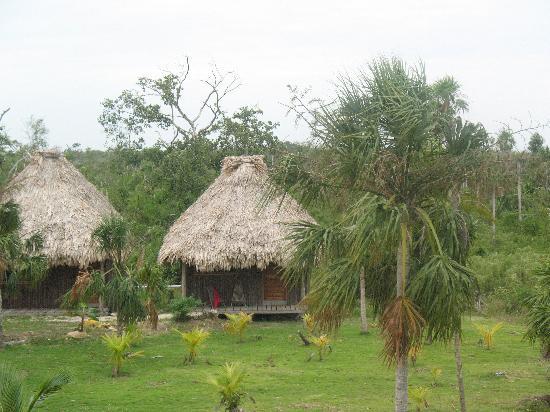 Cerros Beach Resort: the cabanas