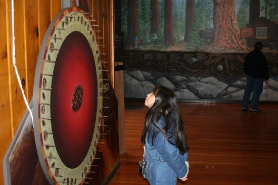 Giant Forest Museum: spinning wheel