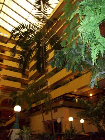 Embassy Suites by Hilton Raleigh - Crabtree: atrium