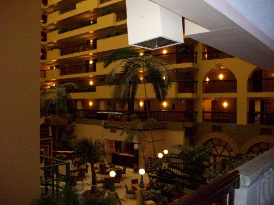 Embassy Suites by Hilton Raleigh - Crabtree: atrium in evening