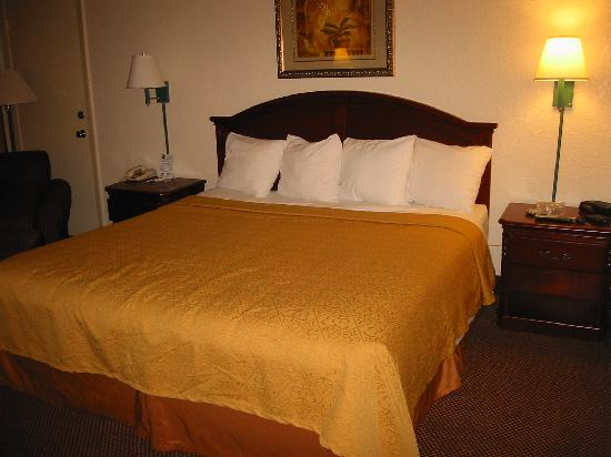 Quality Inn & Suites Airport : Bed