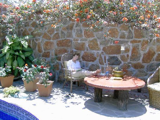 Relaxing in the sun at Casa Bentley.