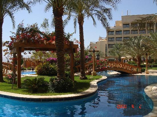InterContinental Aqaba Resort : Pool