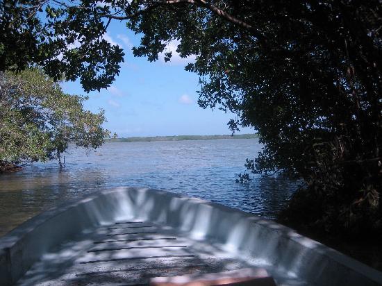 Laguna de Tres Palos: small canal