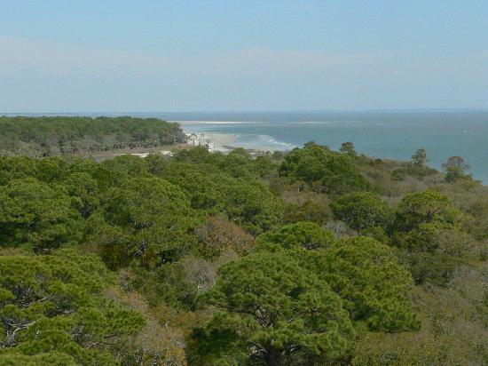Hunting Island State Park: View from the Lighthouse toward Camp Sites