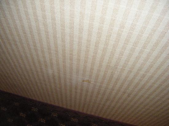 Holiday Inn Kansas City: walls all beat up on.