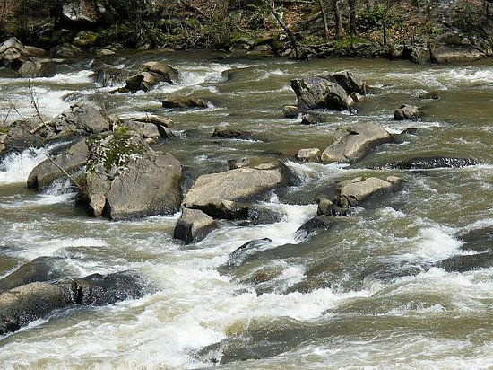 Bryson City, Kuzey Carolina: Tuckaseegee River Rapids