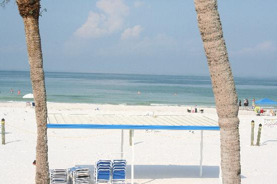 Sea Crest Apartments on Siesta Key : The view is amazing!