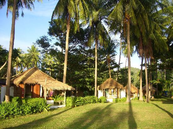 Fisherman's Cottage: les bungalows 1
