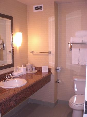 Holiday Inn Express Hotel & Suites Beaumont-Oak Valley : Bathroom