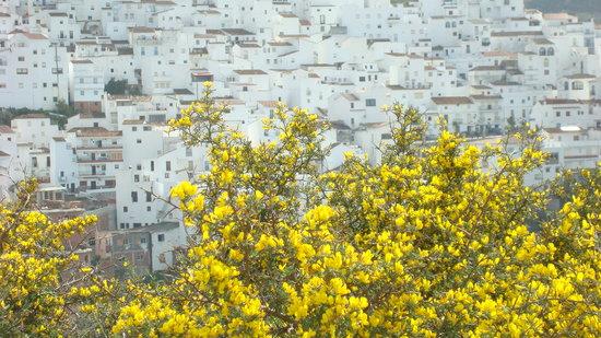 Κόστα Ντελ Σολ, Ισπανία: Casares, Spain
